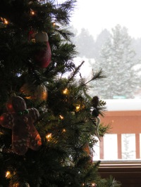 Christmas tree, snow outside