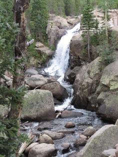 AAAlberta Falls,back,full tree