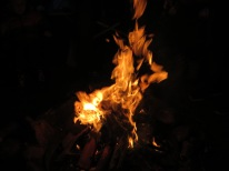 flames in the campfire